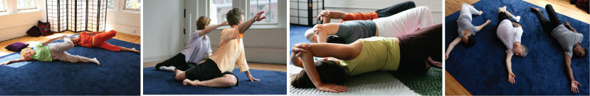feldenkrais method classes reduce pain repetitive strain relief
